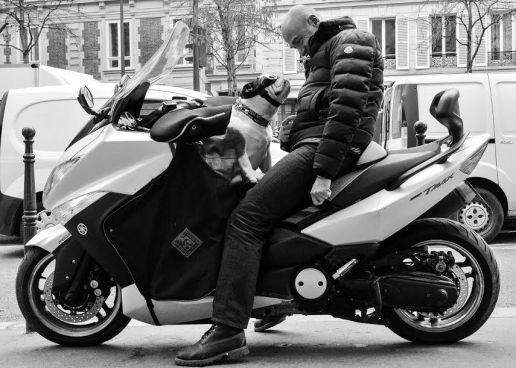 Fico - Yann avec Dash, 5 ans PARIS