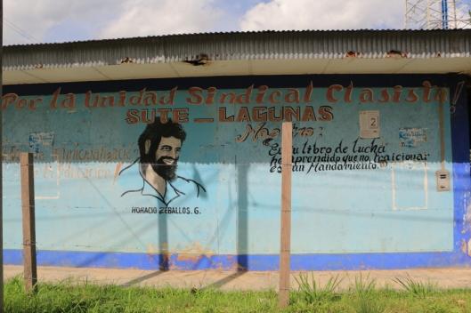 Lagunas (1)