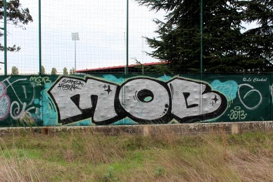 MOB Crew - Lyon / 2013 - Crédit photo : Le Chakal